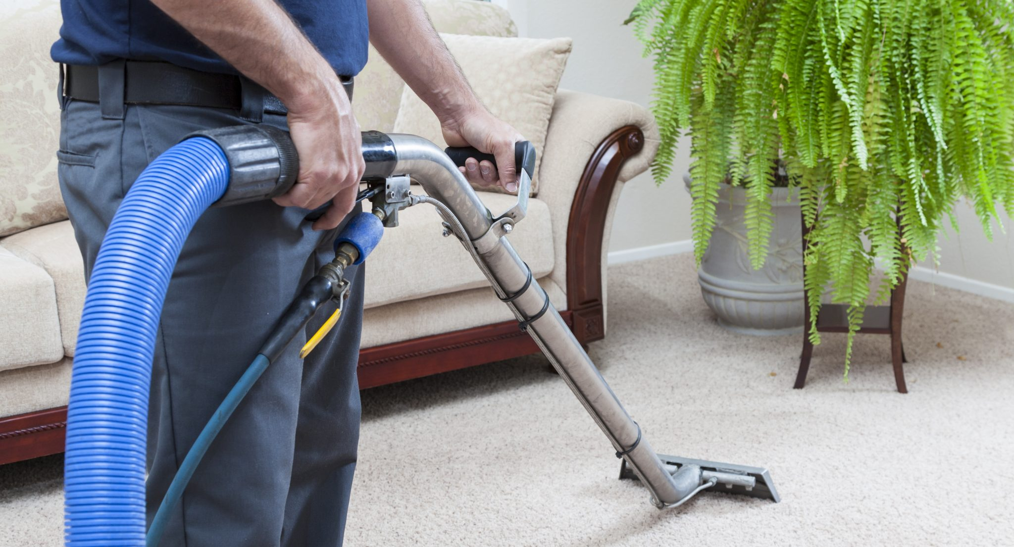 Carpet Cleaning The Right Clean